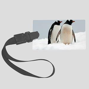 Gentoo penguins Large Luggage Tag