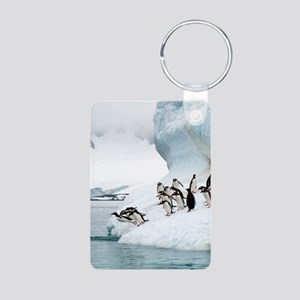 Gentoo penguins jumping in Aluminum Photo Keychain