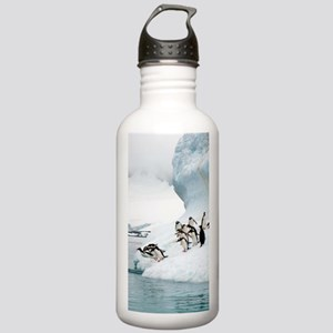 Gentoo penguins jumpin Stainless Water Bottle 1.0L
