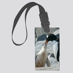 Gentoo penguin feeding chick Large Luggage Tag