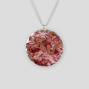 Gallstone crystals, SEM Necklace Circle Charm