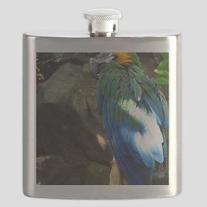Epic Macaw Flask