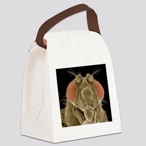 Fruit fly head, SEM Canvas Lunch Bag