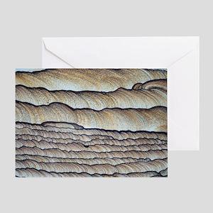 Fossilised sand Greeting Card