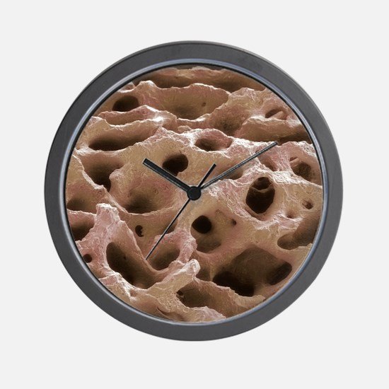 Fossilised dinosaur bone, SEM Wall Clock