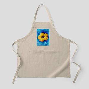 Forget-me-not flower, SEM Apron