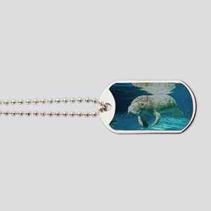 Florida manatee swimming Dog Tags