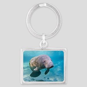 Florida manatee swimming Landscape Keychain