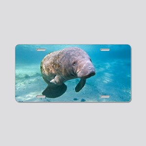 Florida manatee swimming Aluminum License Plate