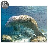 Manatee Puzzles