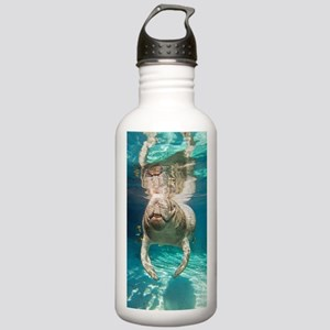 Florida manatee swimmi Stainless Water Bottle 1.0L