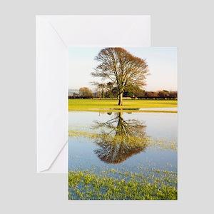 Flooded farmland fields Greeting Card
