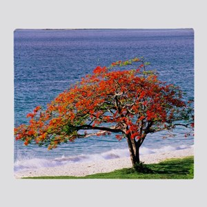 Flamboyant tree Throw Blanket