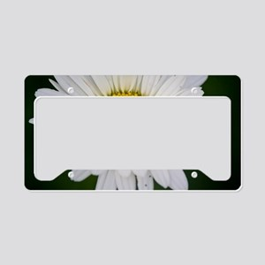 Daisy in the Morning License Plate Holder