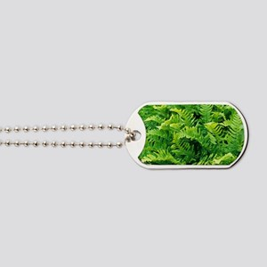 Fern leaves Dog Tags