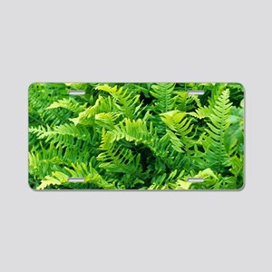 Fern leaves Aluminum License Plate