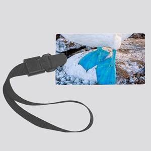 Feet of a blue-footed booby Large Luggage Tag