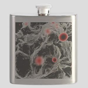 FAST-ACT toxin-destroying powder, artwork Flask