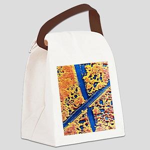 False-colour SEM of molybdenum di Canvas Lunch Bag
