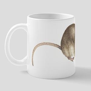 Eurasian pygmy shrew, artwork Mug