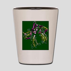 Erythropoietin hormone Shot Glass