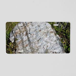 Erratic boulder Aluminum License Plate