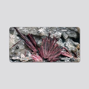Erythrite crystals Aluminum License Plate