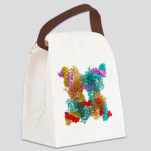 Enzyme catalysing DNA recombinati Canvas Lunch Bag