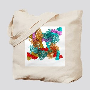 Enzyme catalysing DNA recombination Tote Bag