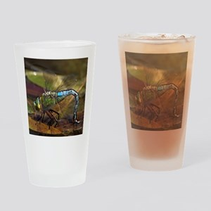 Emperor Dragonfly Drinking Glass