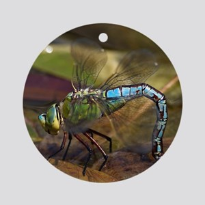 Emperor Dragonfly Round Ornament