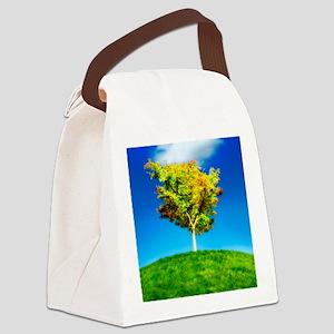 Environmental care, conceptual im Canvas Lunch Bag