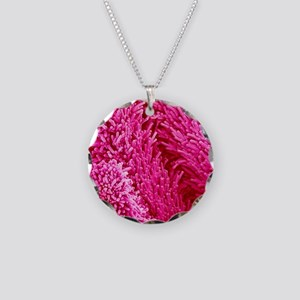 Easter cactus stigma, SEM Necklace Circle Charm