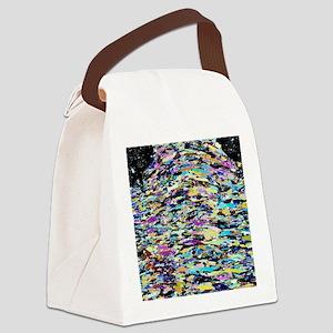 Eclogite rock, light micrograph Canvas Lunch Bag