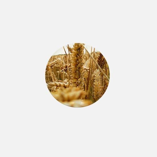 Ears of wheat Mini Button