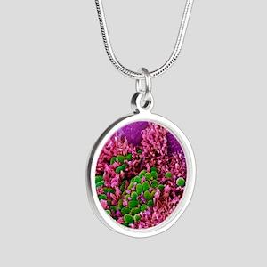 E. coli bacteria, SEM Silver Round Necklace