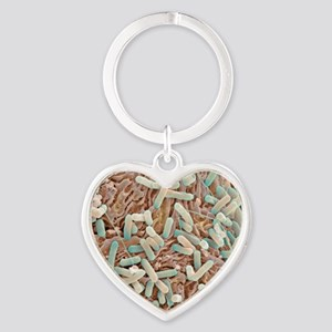 E. coli bacteria, SEM Heart Keychain
