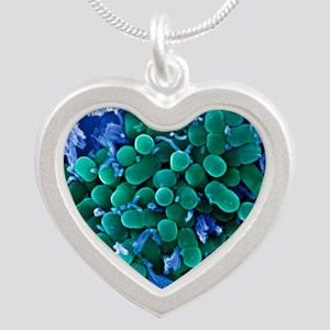 E. coli bacteria, SEM Silver Heart Necklace