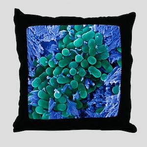E. coli bacteria, SEM Throw Pillow
