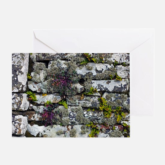 Drystone wall with plants Greeting Card