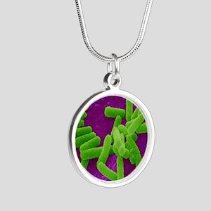 E. coli bacteria Silver Round Necklace