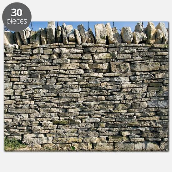 Dry stone wall, Dorset Puzzle