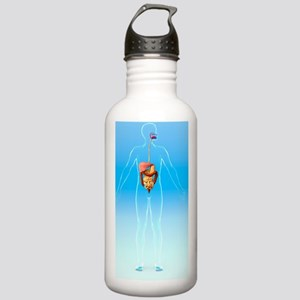 Digestive system, artw Stainless Water Bottle 1.0L
