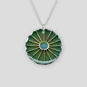 Diatom, SEM Necklace Circle Charm