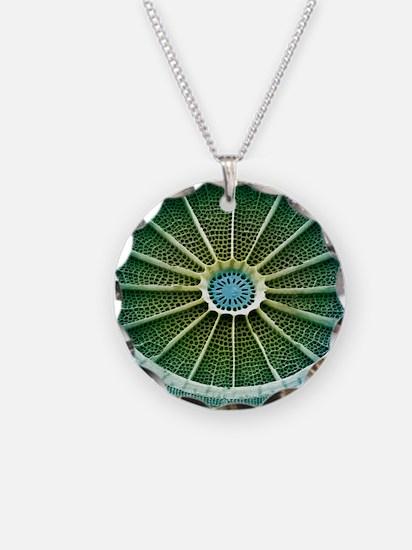 Diatom, SEM Necklace
