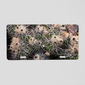 Devil's Club cactus (Gouson Aluminum License Plate