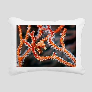 Denise's pygmy seahorse Rectangular Canvas Pillow