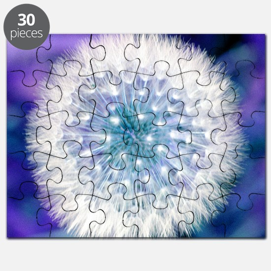 Dandelion seed head Puzzle