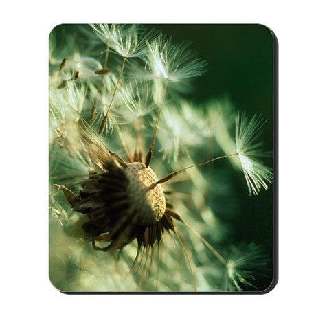 Dandelion clock Mousepad