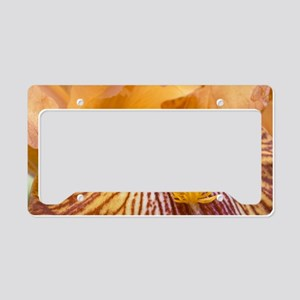Dalmatian iris License Plate Holder